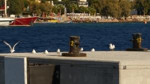 Impressionen Türkei Oktober 2014